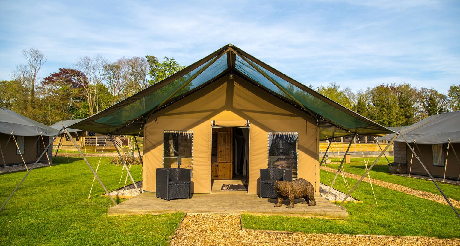 tiger lodge port lympne reserve live inches away from. Black Bedroom Furniture Sets. Home Design Ideas