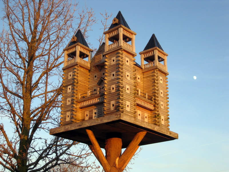 These luxury birdhouses feature fly-through tunnels and swimming pools