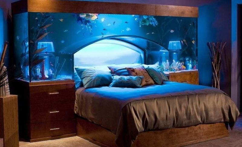 11 All Bookworms In The House Try This Awesome Aquarium Bookshelf To Show Off Your Book Collection