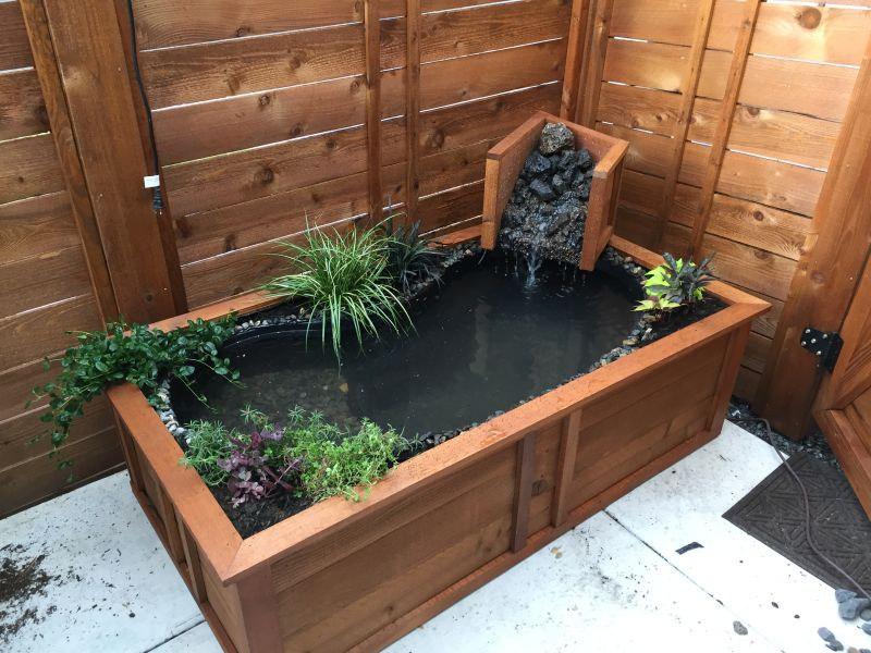 turn old bathtub into a natural-looking pond