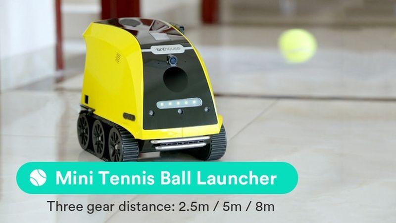 Anthouse Pet Companion Robot