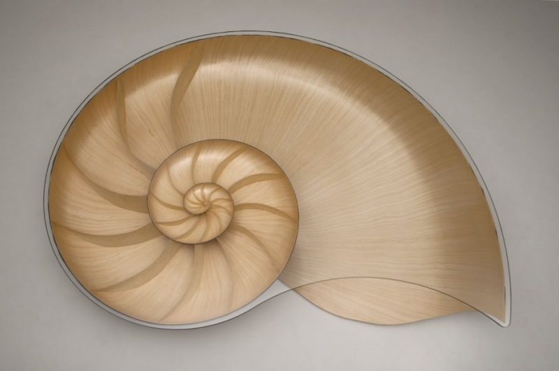 Marc-Fish-Nautilusb table