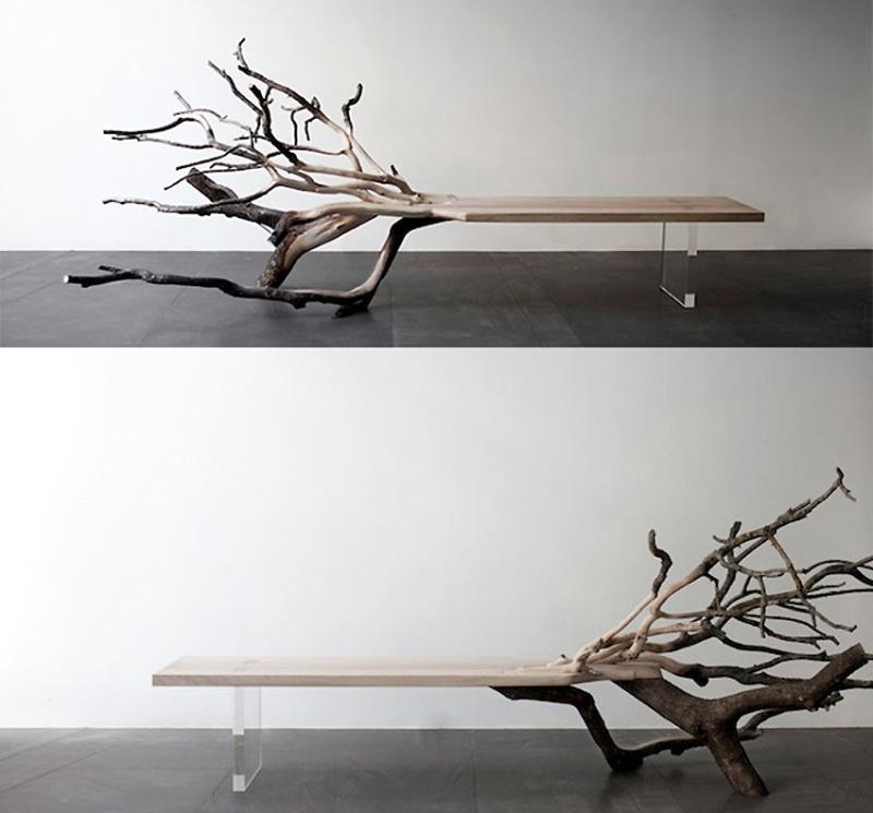 falleb tree bech_11