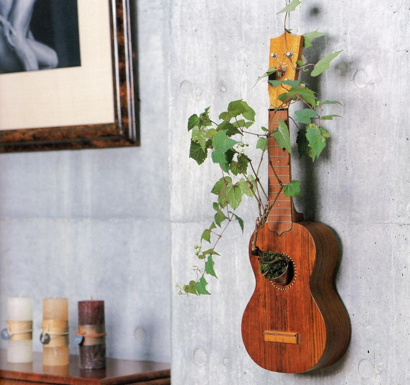 guitar kitchen garden