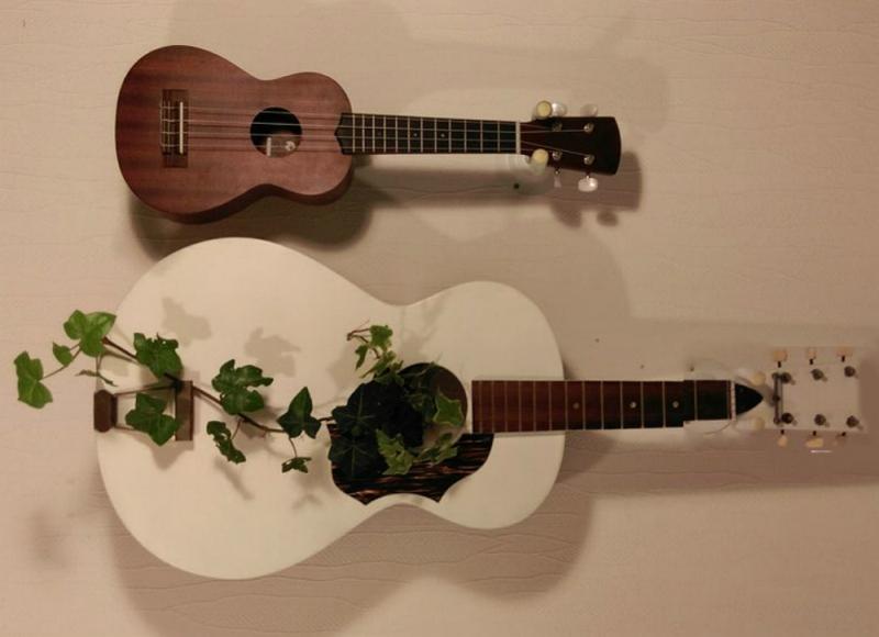 guitar plante