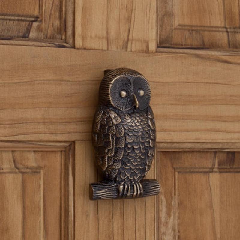 owl-door-knocks_1