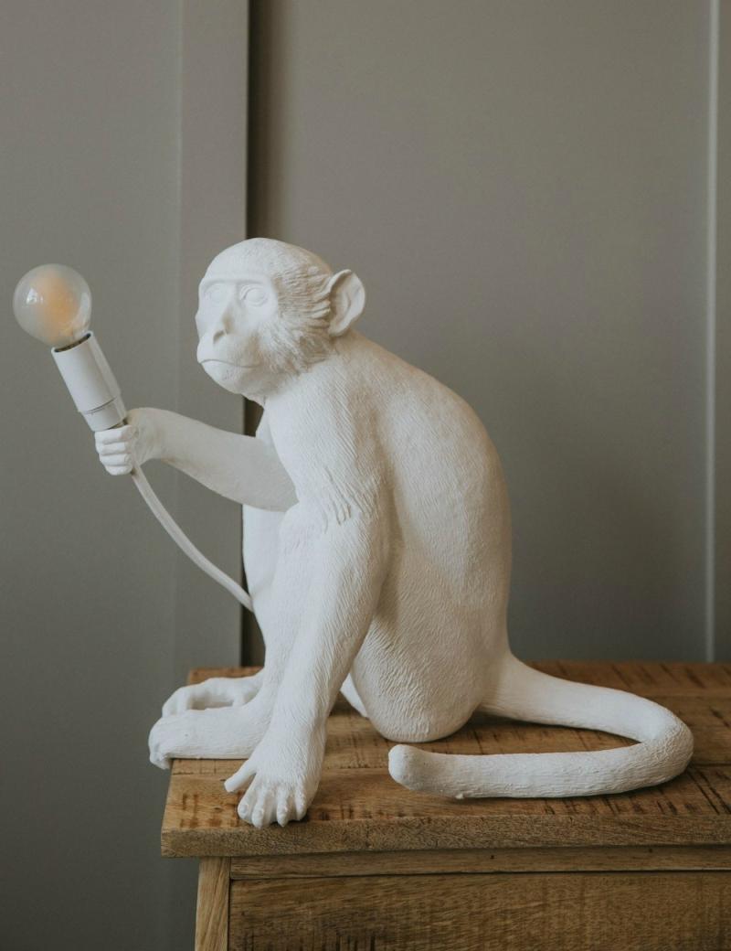 Seletti-Lighting-Monkey-Lamp-Sitting-Lamp-Indoor