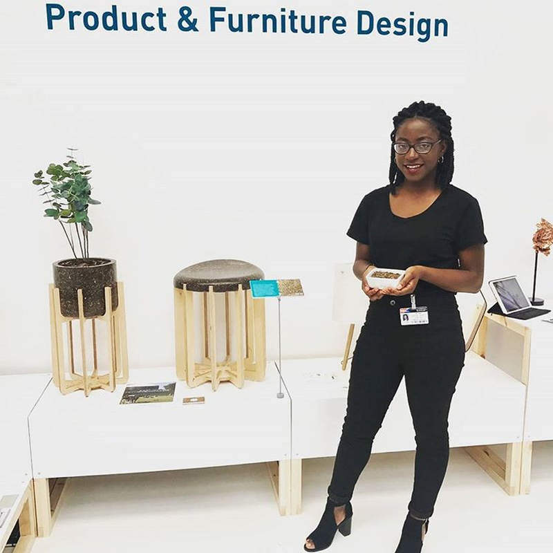 How about furniture made from cow manure?
