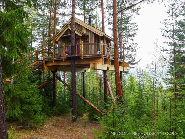 take a look at pete nelson s first ever international treehouse in
