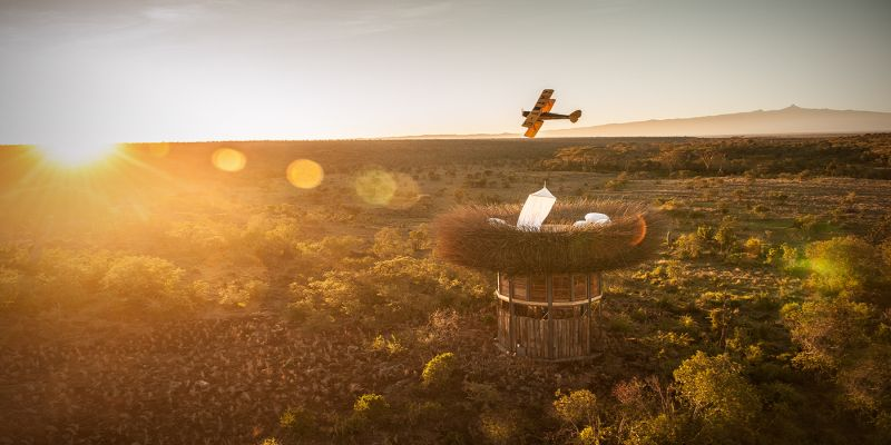 Bird Nest safari suite offers panoramic view of African wilderness