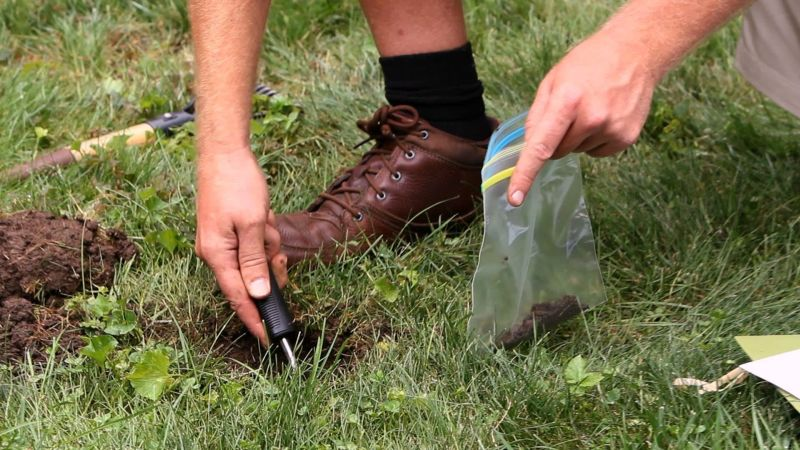 Conduct a soil test