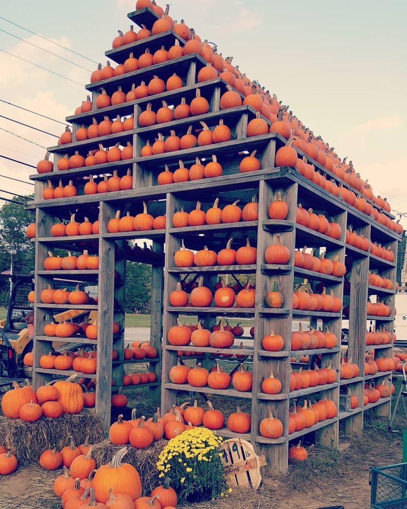 Build Halloween Pumpkin house