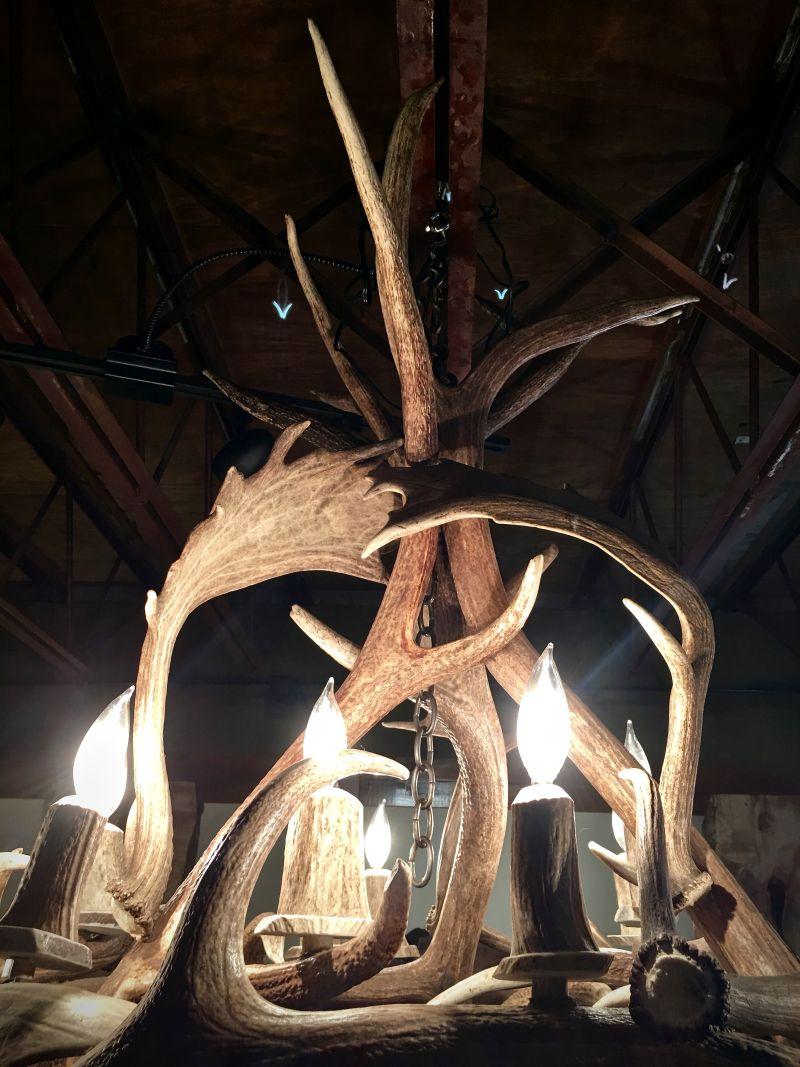 real antler chandelier metal kelly maxwells real antler chandelier