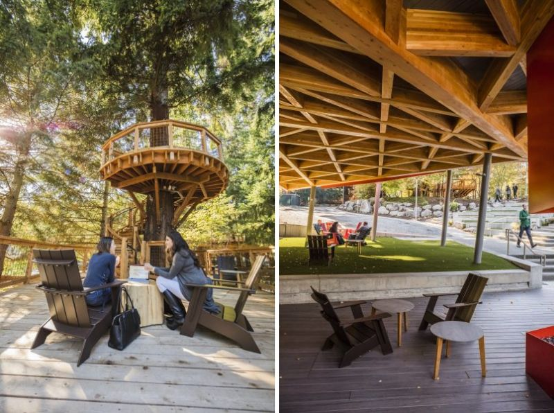 Microsoft Builds Technology Enabled Treehouse Workspaces
