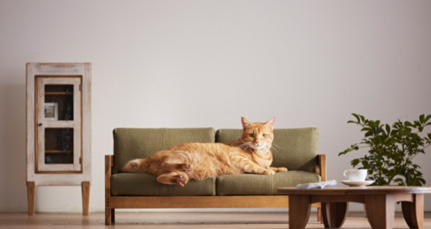 Okawa Line of Miniature Cat Furniture_4