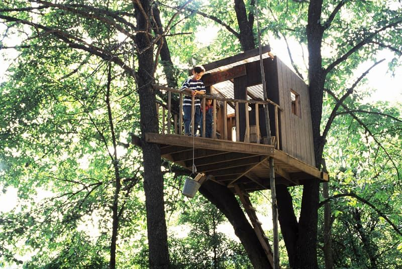 5 Things You Need To Know Before Building A Treehouse