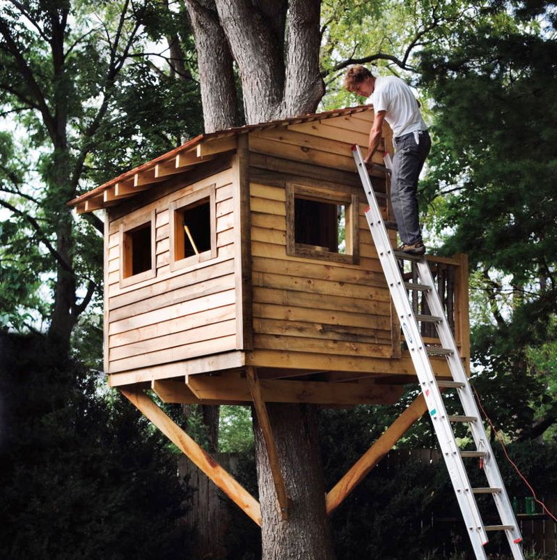 5 things you need to know before building a treehouse - Things to know when building a house ...
