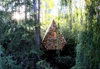 Studio North's human-sized Birdhut features 20 birdhouses on its façade