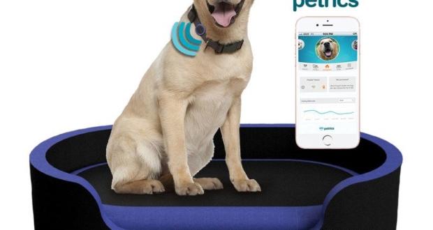petrics smart bed