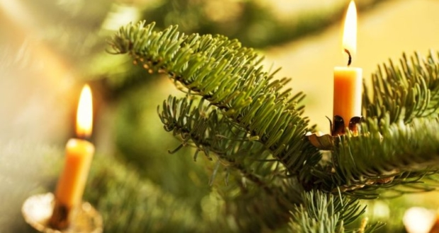 Christmas tree Fire preventive tips