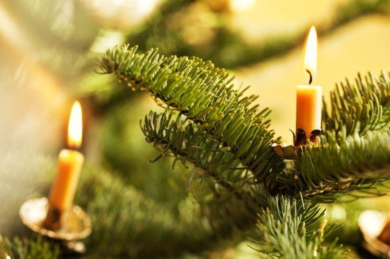 Christmas tree Fire preventive tips