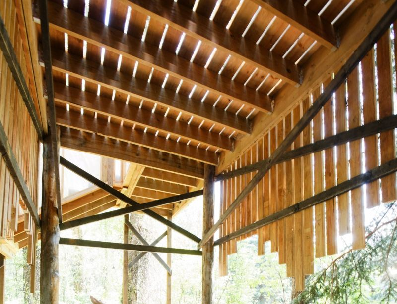 ACES Treehouse Elevated Platform gives you an Insight into the Wildlife
