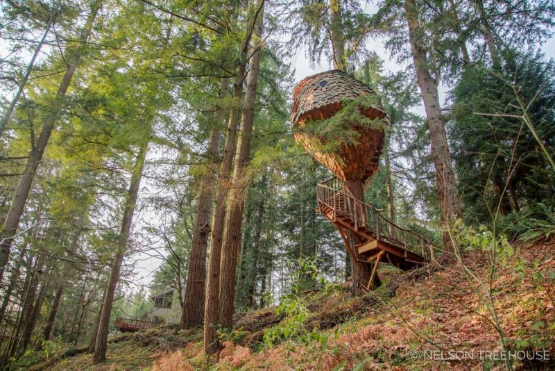 Beehive Treehouse by Pete Nelson is a whimsical masterpiece!