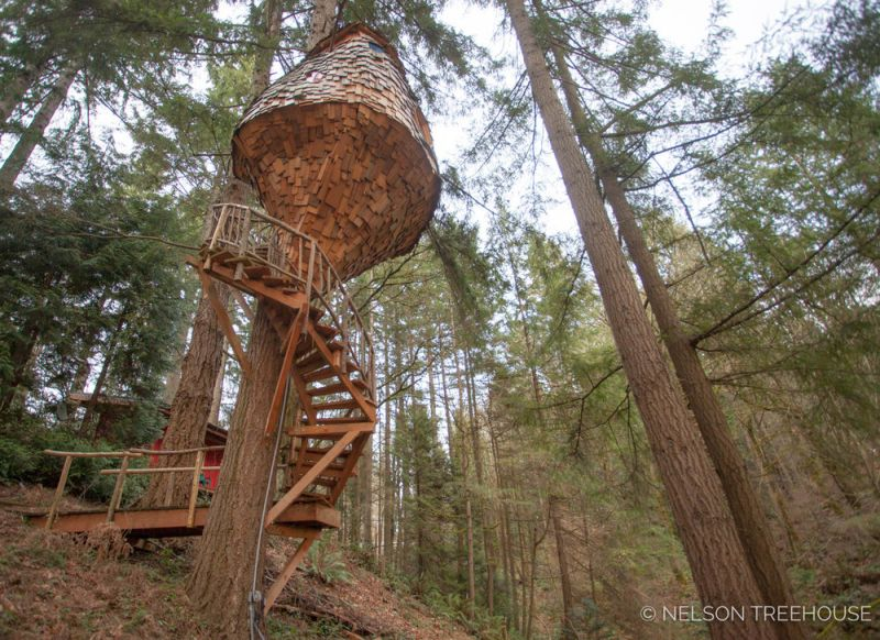 pete nelson. Beehive Treehouse By Pete Nelson Is A Whimsical Masterpiece!