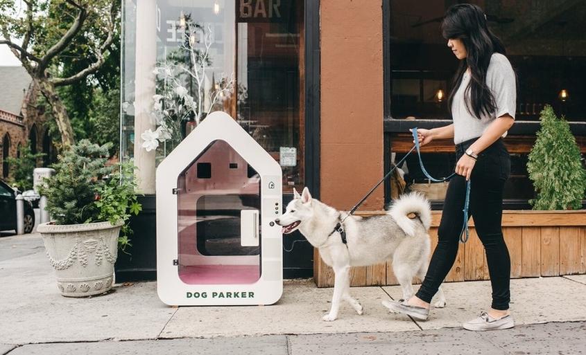 Dog Parker rentable, outdoor smart doghouse