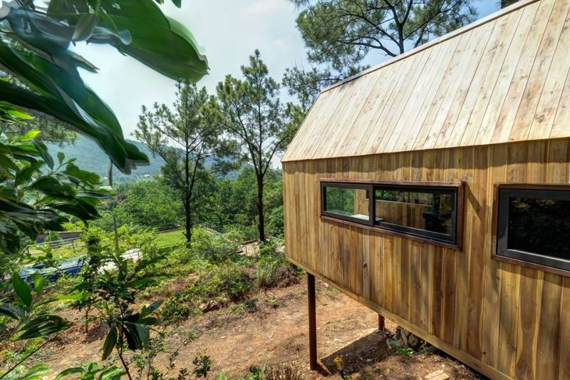 Forest House with Glass Façade is an Ideal Way to Return to the Nature