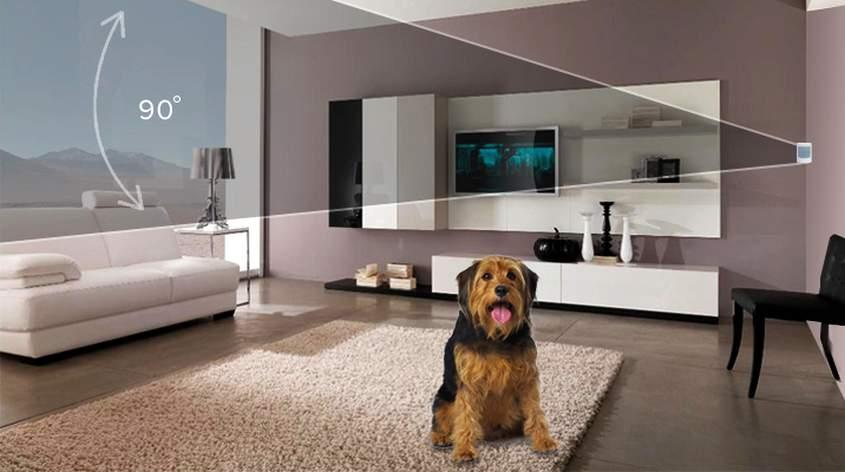 Prevent the Embarrassment of Pets Triggering False Home Security Alarm