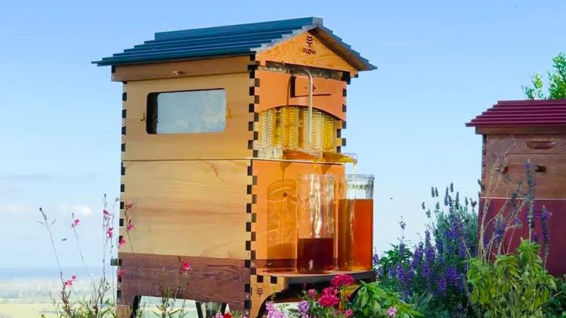 Flow Hive 2 Artificial beehive Extracts Honey Without Disturbing Bees
