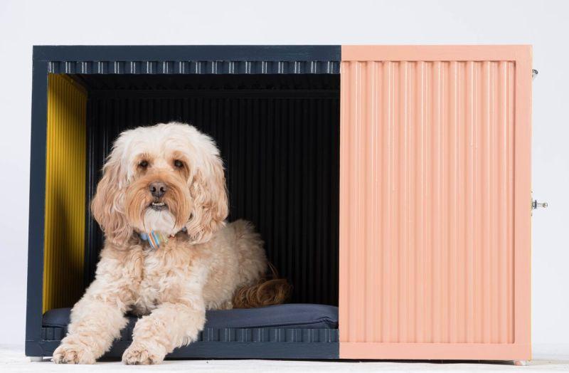 Buddy Box by Roselind Wilson Design