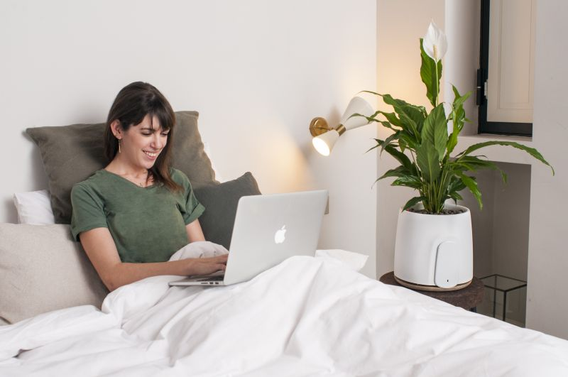 Clairy's Natede Smart Air Purifier Uses Power of Nature to Clean Air