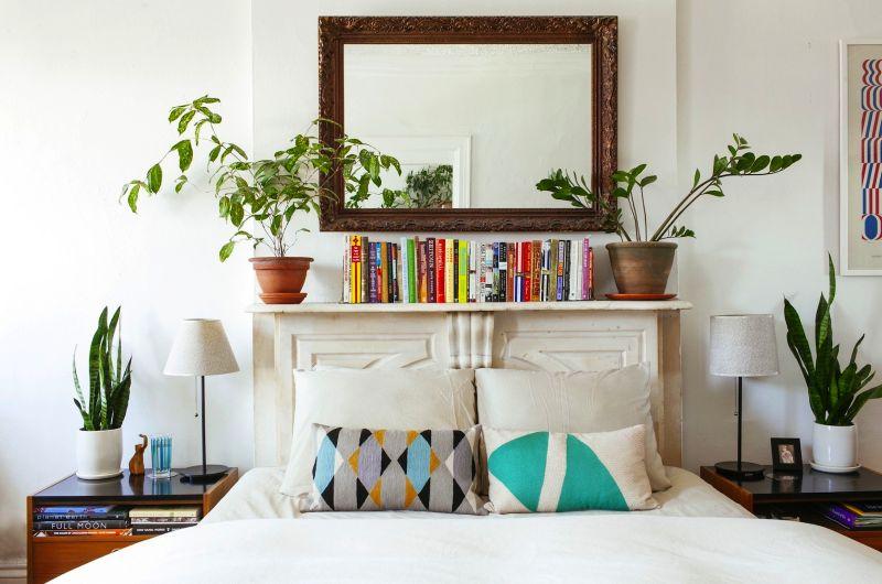 Houseplants in bedroom