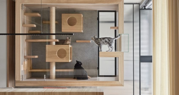 wood and glass cat enclosure by indot