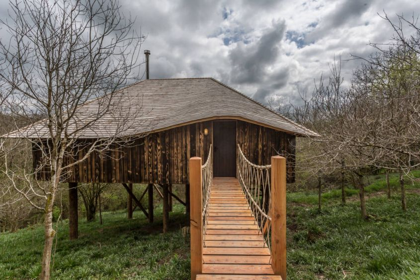Black Wolf Treehouse is an enviable Vacation Rental in Devon
