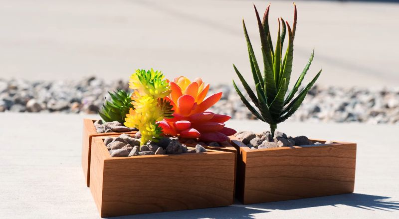 Easy DIY: Make A Modular Succulent Planter with Limited Tools
