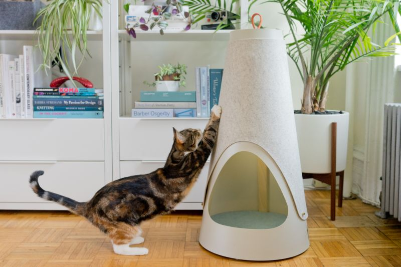 The Cone cat bed cum scratching post by WISKI