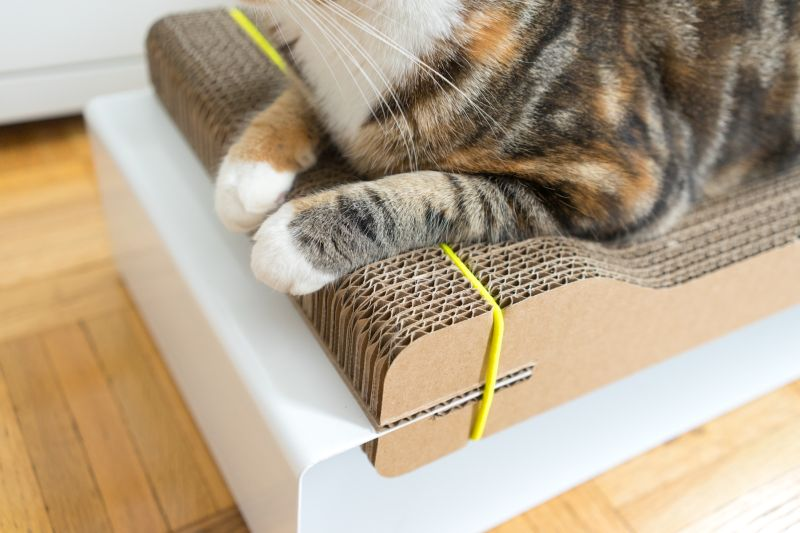 The Corr Lounge cat lounge and scratcher by WISKI