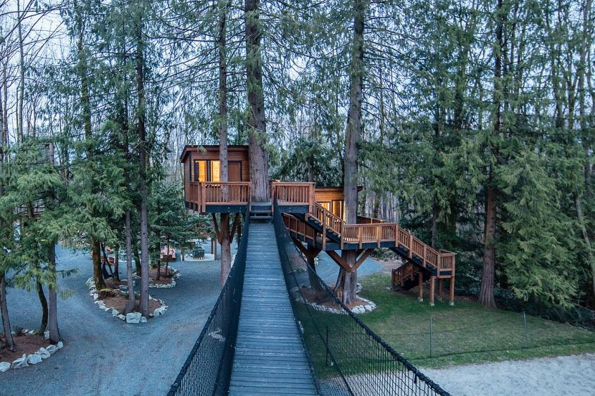 This Treehouse comes with a $1,900,000 Family Home in Courtney, BC