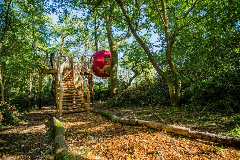 Goji Treehouse Rental in UK is Ideal for Couples
