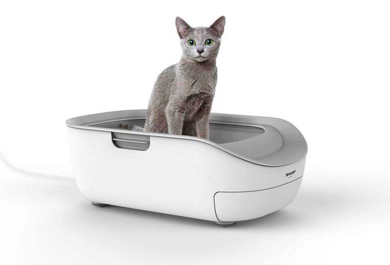 Sharp smart cat litter box pet monitor