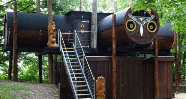 Owl Lookout Family getaway