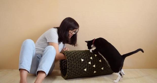 Peek A Boo Cat Friendly Furniture