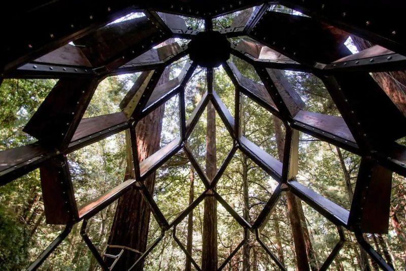 Treehouse, treehouse rental, Treehouse hotel, Pinecone Treehouse, O2 Treehouse, Dustin Feider, treehouse rental in California, treehouse in California,
