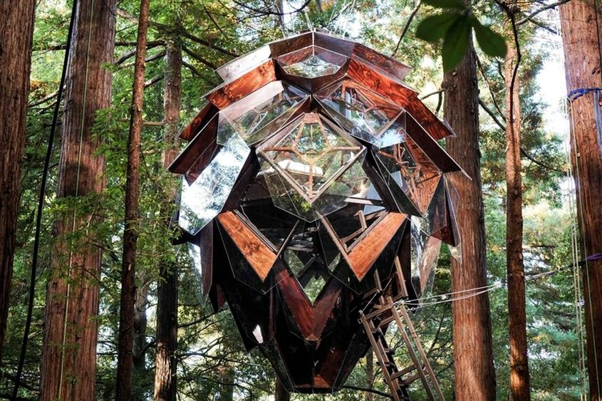 Pinecone Treehouse In California Has See Through Floor