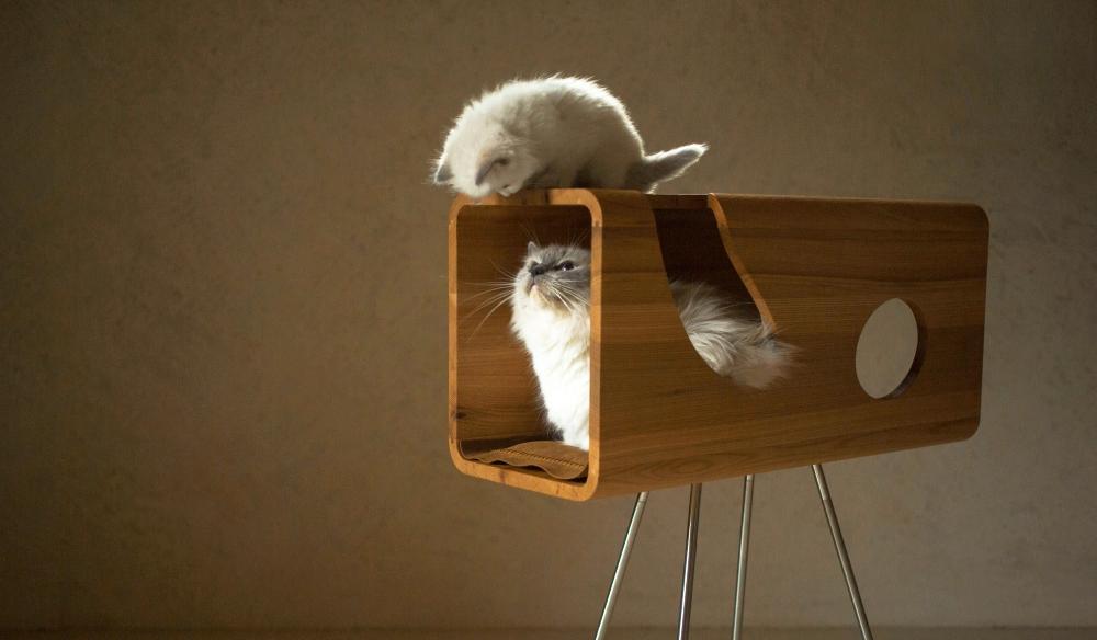 Cat60 Wood Cat Bed by Brando Design