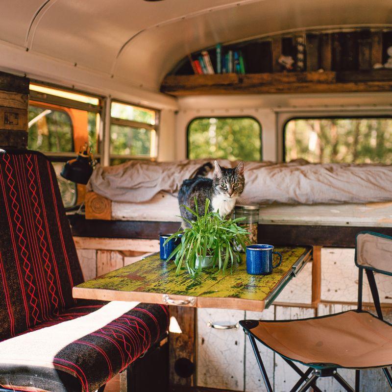 Couple Converts 1993 GMC School Bus into Tiny House