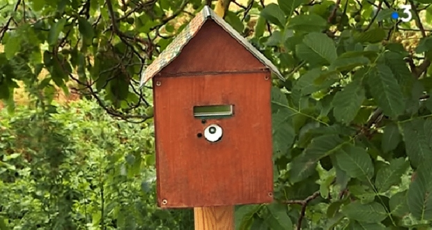Notiphy Box